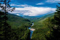 Kanadas unendliche Wälder