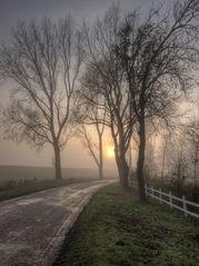Kanalpolder im Nebel