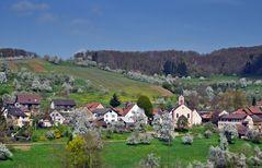 ~~~ Kandern-Feuerbach im Frühling 2014 ~~~