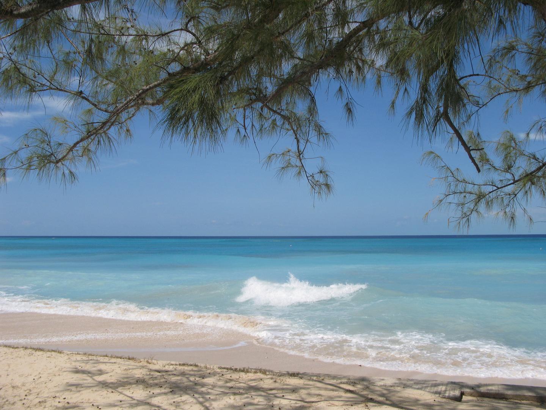 Karibik pur auf den Turks and Caicos-Inseln