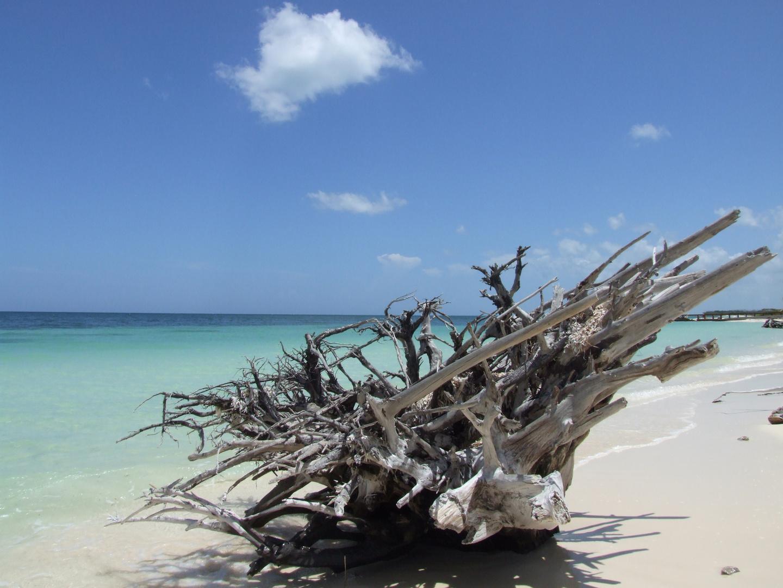 Karibische Impressionen