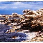 .. Karidi Beach ..