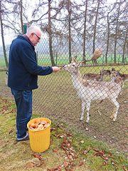 Karl Heinz beim Füttern