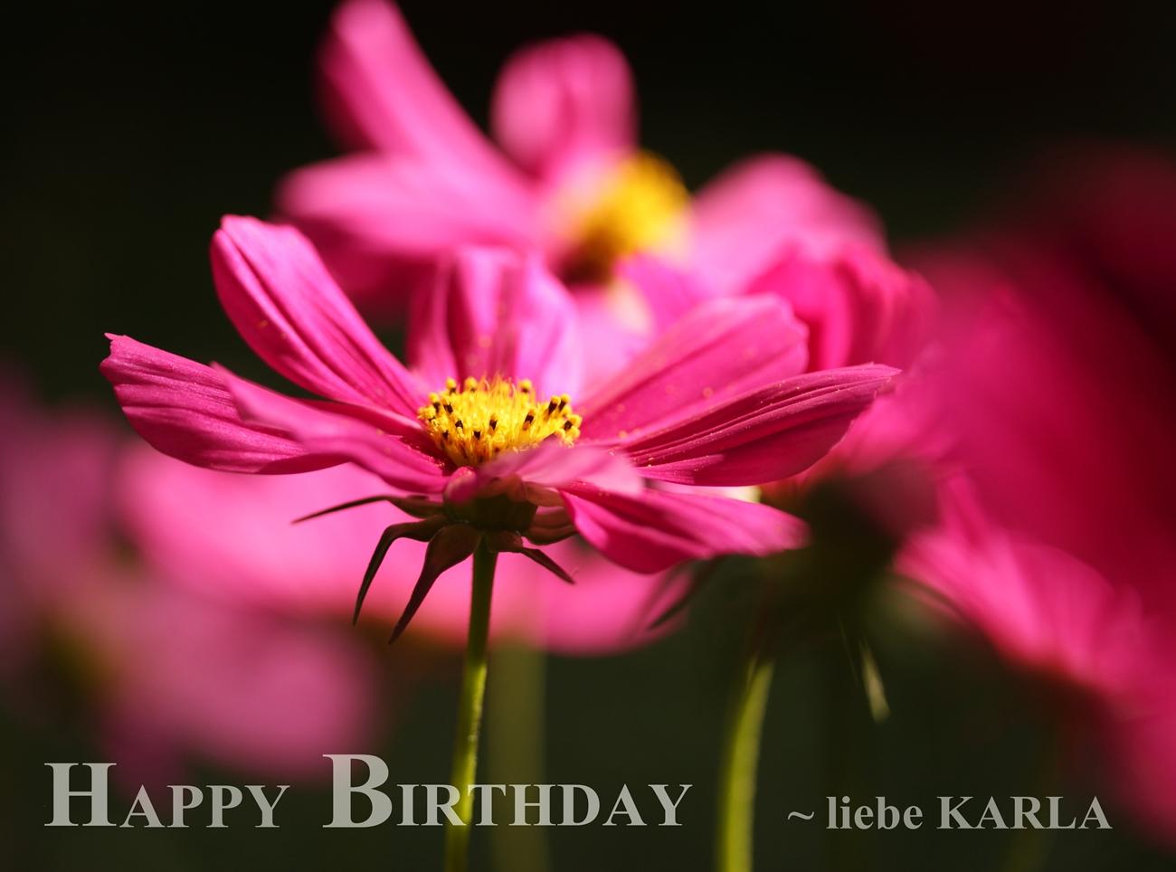 Karla hat Geburtstag