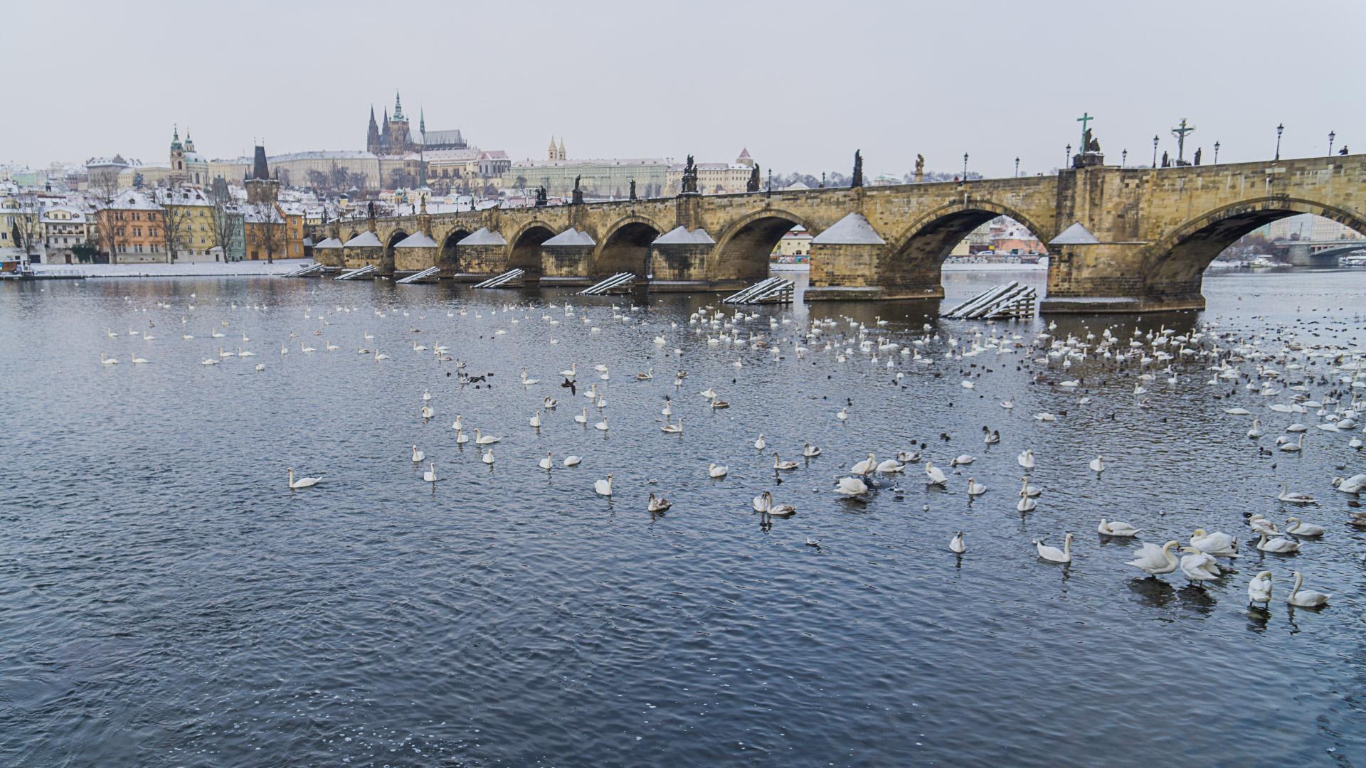Karlsbrücke im Winter