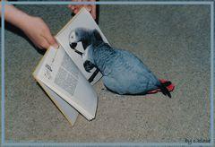 Karoline beim Lesen