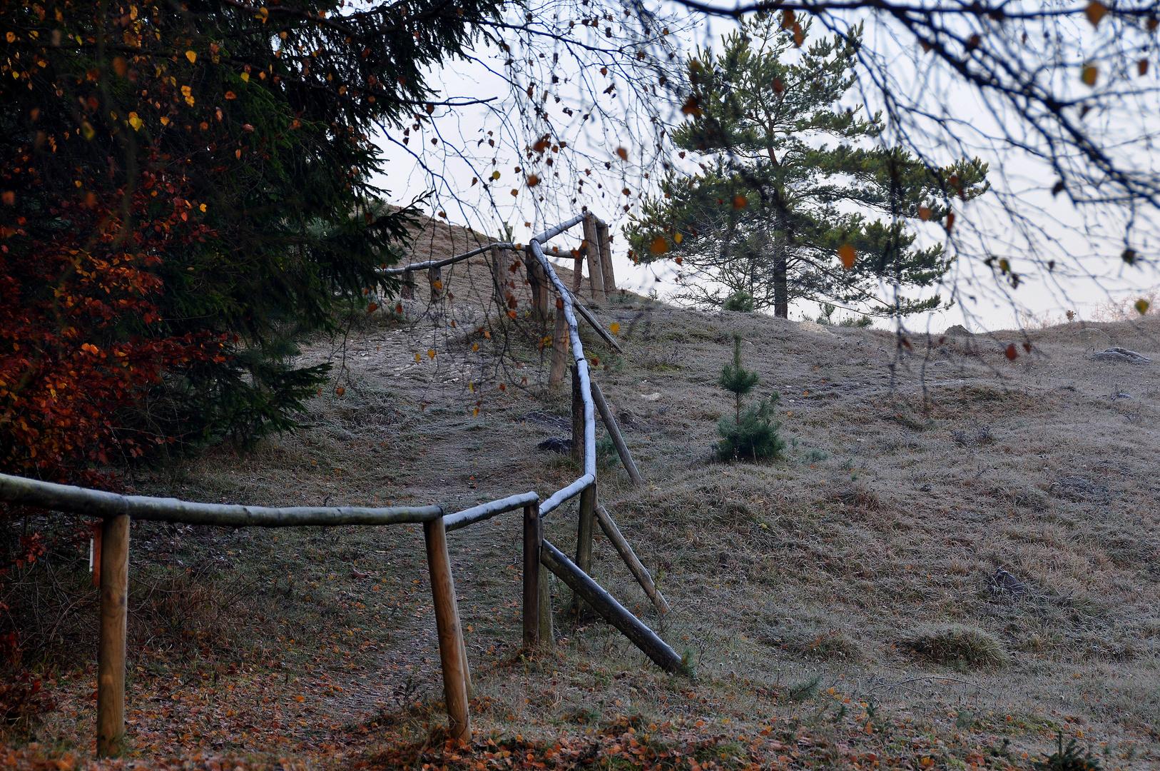 Karstwanderweg 87 Aufstieg zum Sattelkopf