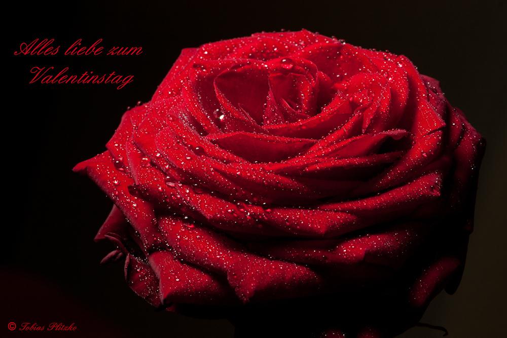 Karte Valentinstag