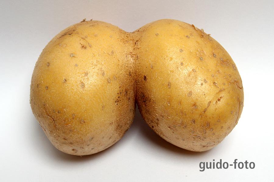 Kartoffel Phantasie