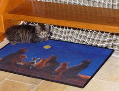 Katze auf Katzenteppich