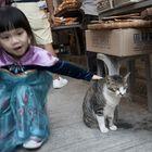 Katze in Tai O Village