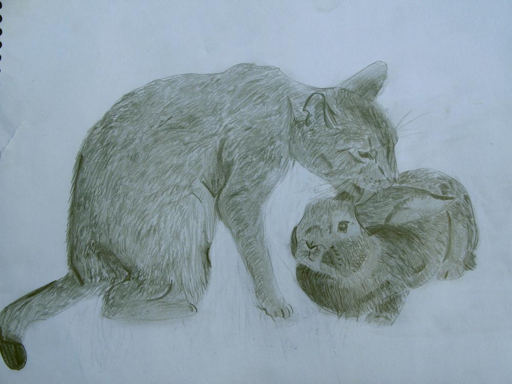Katze mit Kanninchen