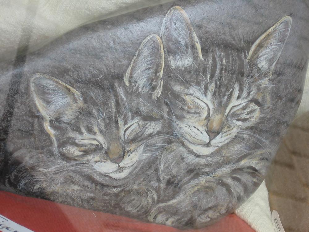 katzen auf stein gemalt foto bild natur tiere youth. Black Bedroom Furniture Sets. Home Design Ideas