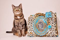 Katzen würden Taschen kaufen I.