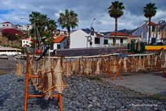 Katzenhai (Madeira Stockfisch)  Pejegata Madeira