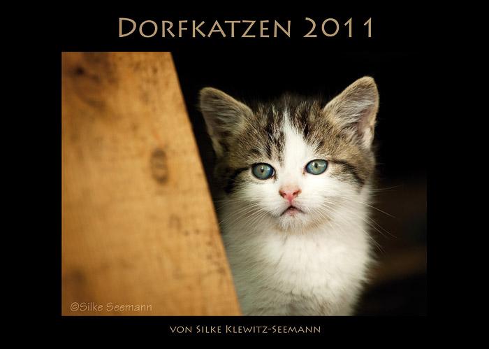 Katzenkalender 2011