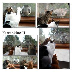Katzenkino II