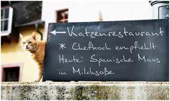 Katzenrestaurant