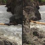 Kayak-Limbo gefällig?