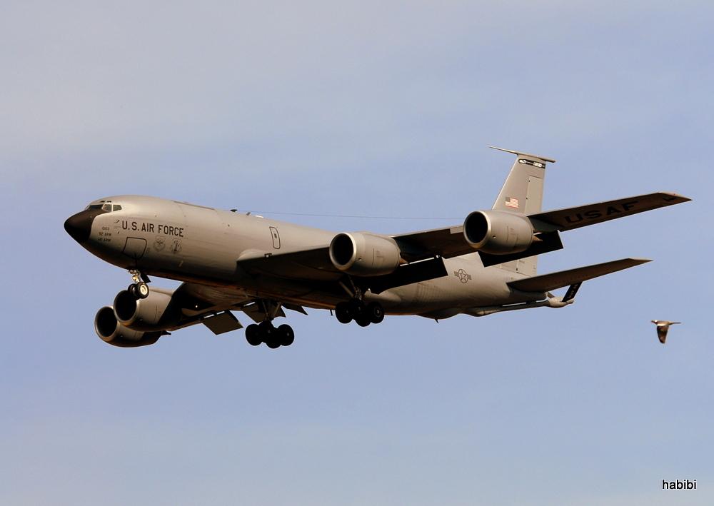 KC-135R Stratotanker + Vogel ;)