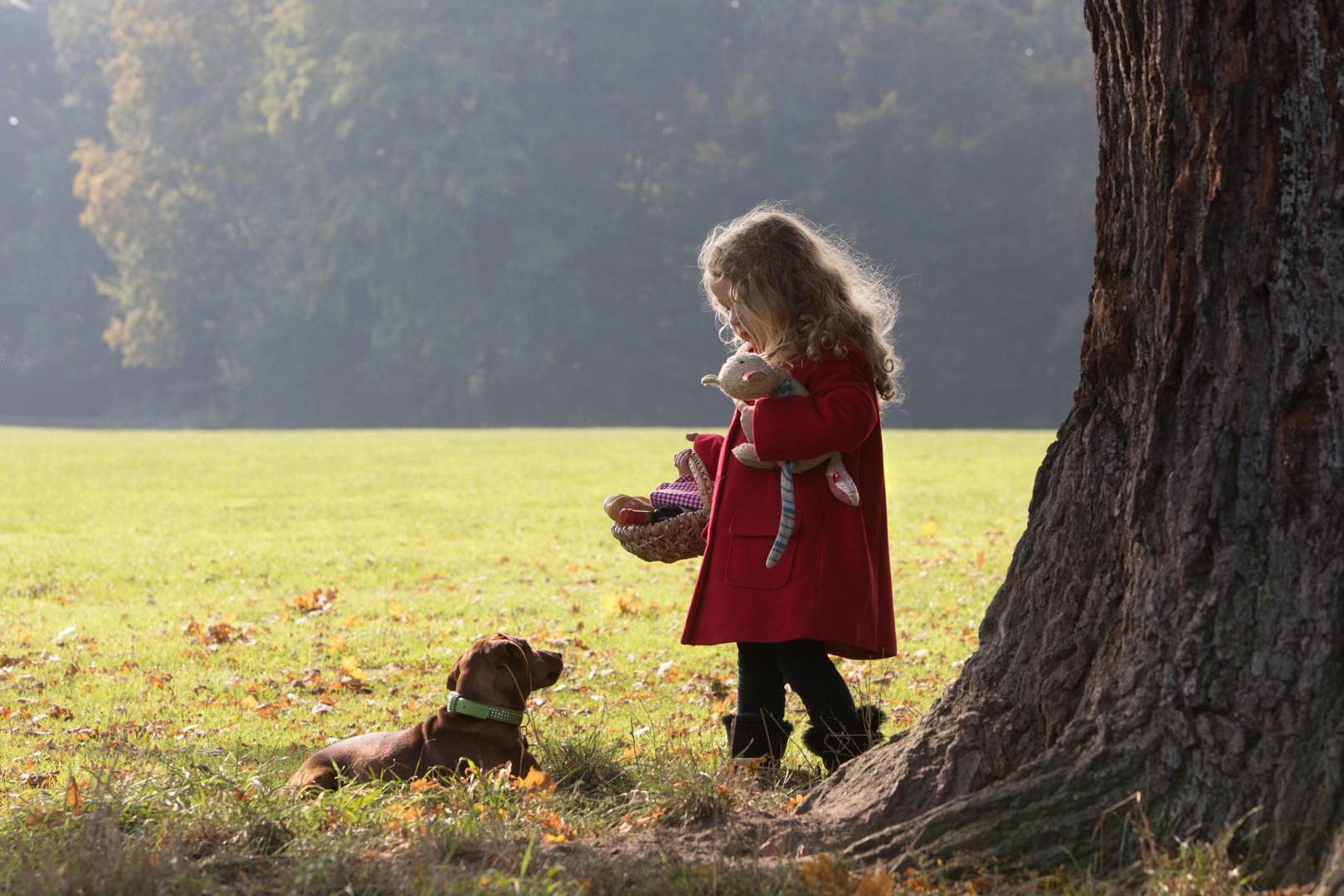 kein rotkäppchen foto  bild  outdoor hund portrait