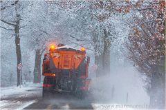 Keine Lust auf Winter