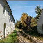 Kellergasse in Großmugl - Herbst