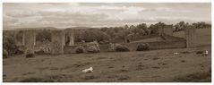 Kells Priory #1