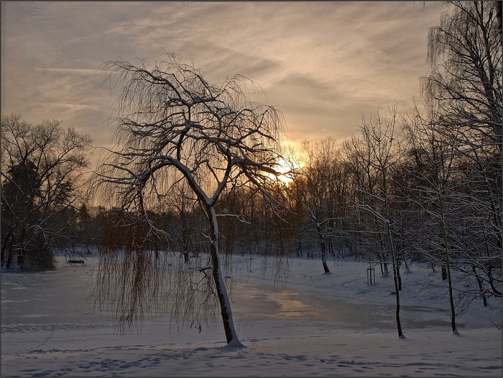 Kendenicher Weiher im Schnee