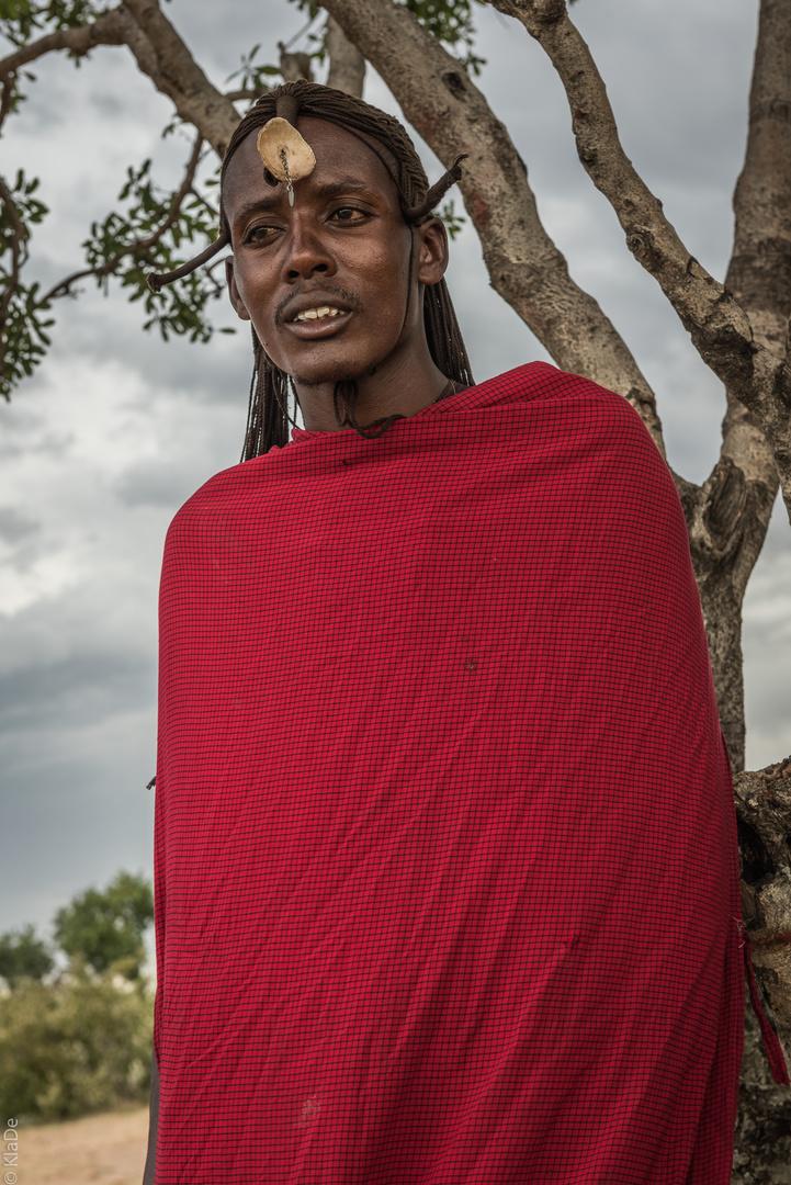 Kenia - Masai Mara - Massai - Junger Krieger im Ornat