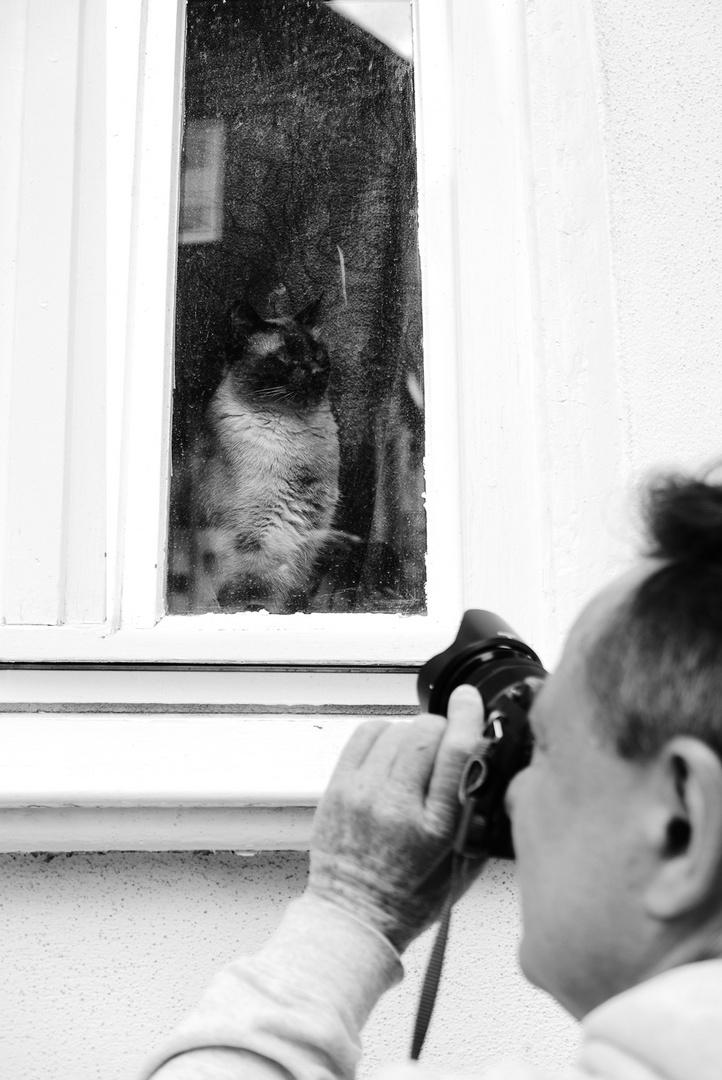 Katze Vor Dem Fernseher Bild: Kennt Wer Den Fotografen Der Vor Dem Alten Haus Steht Und
