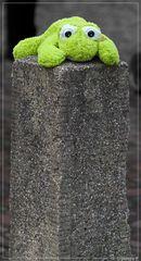 Kermit der Frosch ist wieder da, er saß vor dem Weihnachtsmarkt in Münster