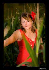 Kerstin im Mais