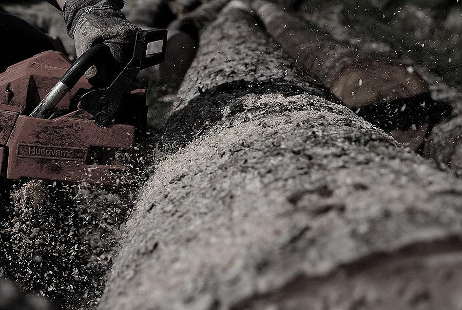 Kettensägen Holzmassaker III