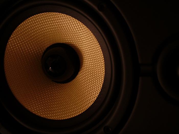 Kevlar Speaker