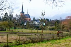 Kiedrich - Pfarrkirche St. Valentinus - 14. Januar 2016
