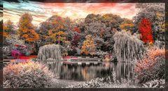 Kiel #39 (Herbst im Schrevenpark)