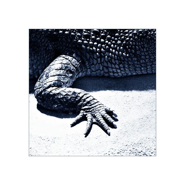 kieselwurm