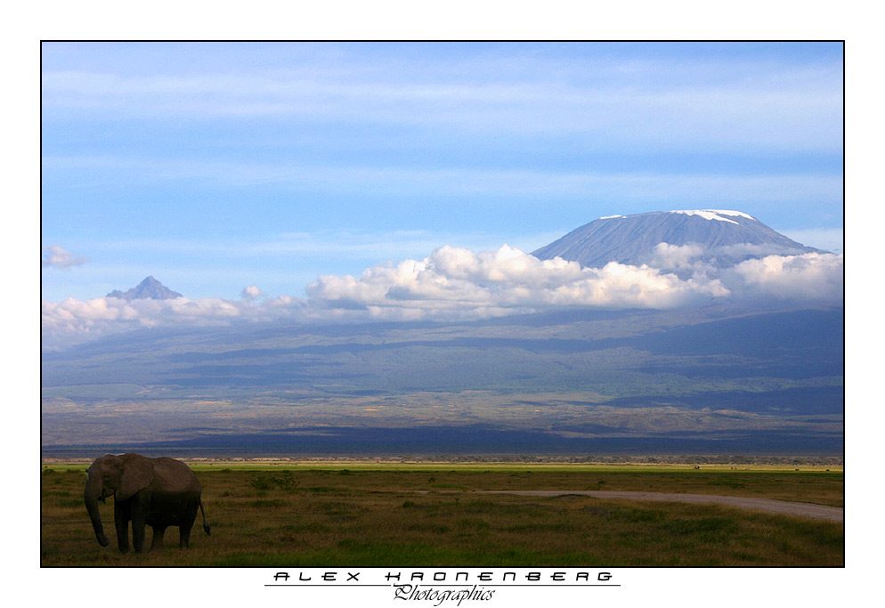 Kilimanjaro I