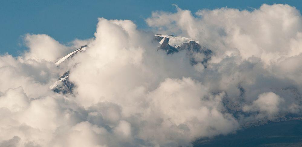 Kilimanjaro in Wolken 1