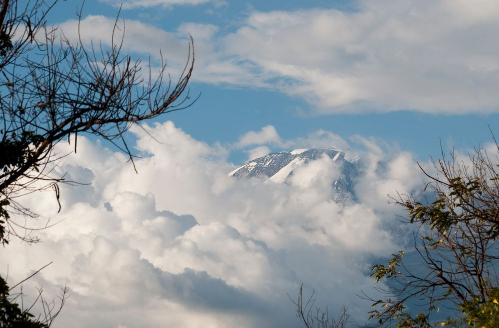 Kilimanjaro in Wolken 2