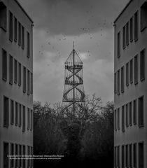 Killesberg ( Stuttgart )
