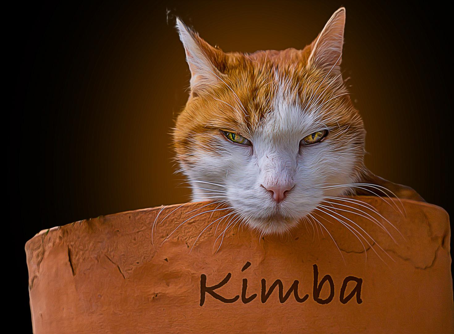 Kimba-