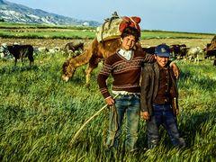 Kinderarbeit ist verboten.     ..120_4317