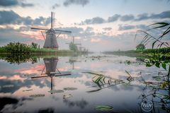 Kinderdijk 2016