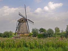 Kinderdijk (4)