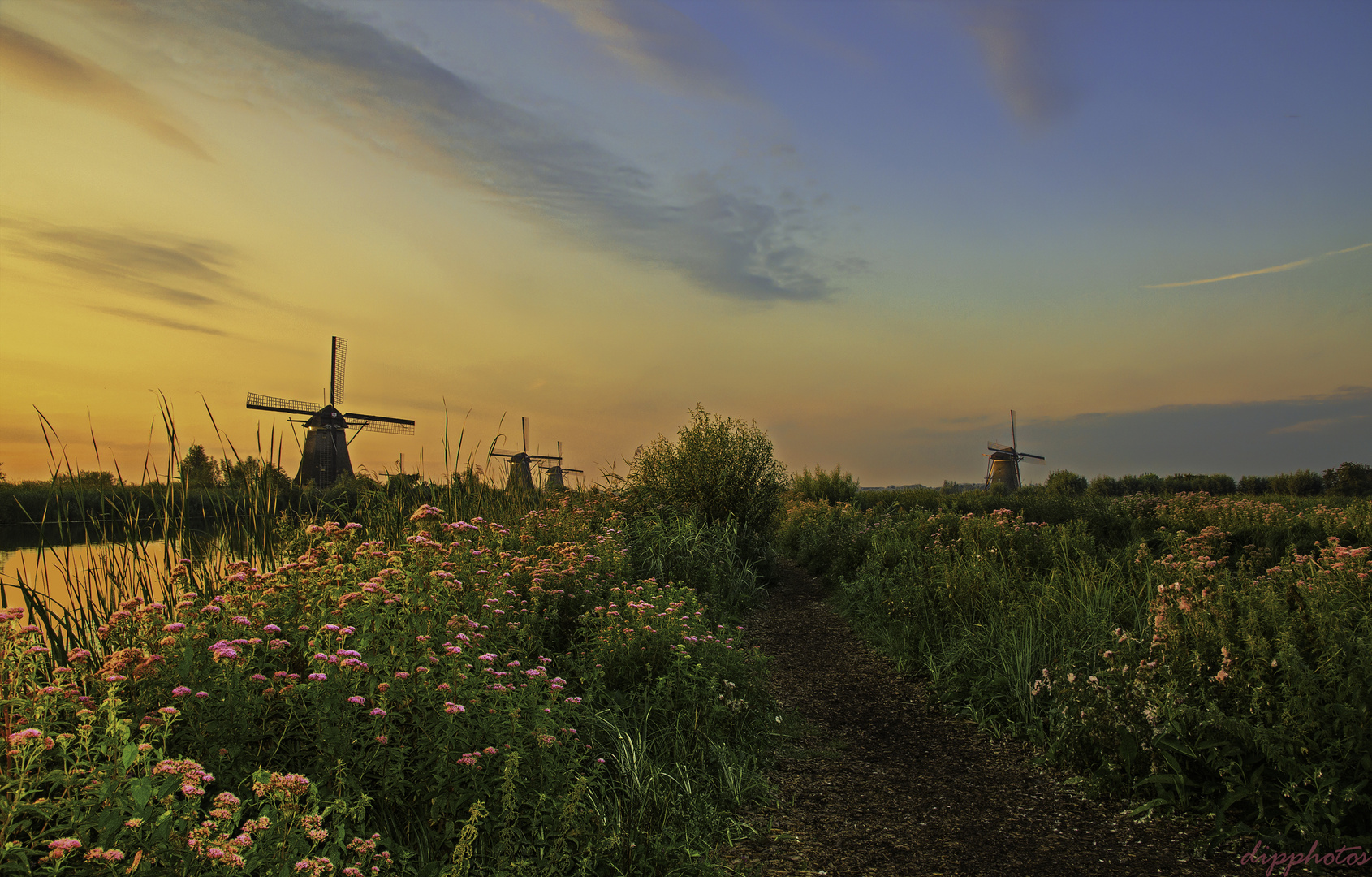 Kinderdijk -  Morgenstimmung.