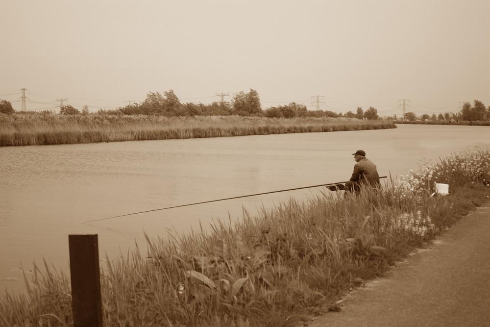 Kinderdijk. Olanda.