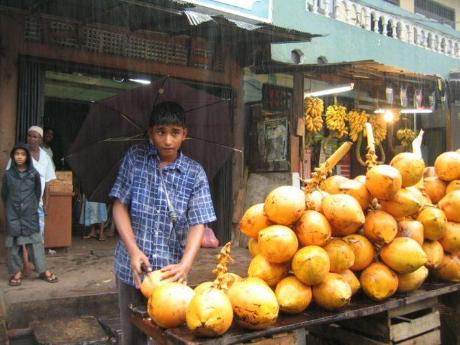 King coconut seller