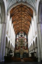 Kirche Dom Kloster Sint Bavokerk in Haarlem (Niederlande) (17.03.2012)(4)